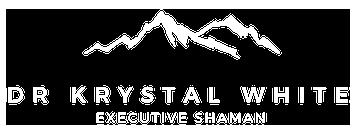 The Executive Shaman
